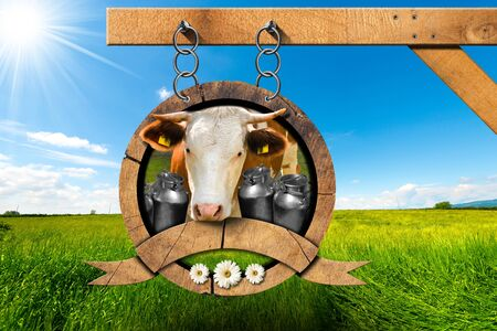 s horn: Dairy products sign with head of cow cans for the transport of milk green grass and three daisy flowers. Hanging from a metal chain on a pole in a countryside landscape