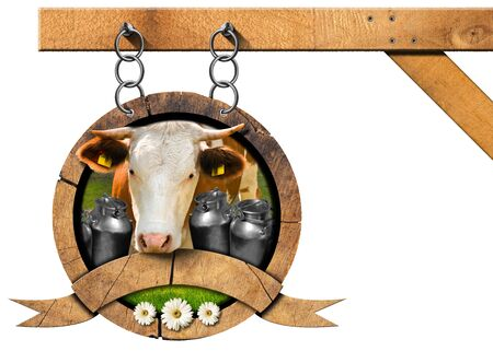 s horn: Dairy products sign with head of cow cans for the transport of milk green grass and three daisy flowers. Hanging from a metal chain on a pole and isolated on white