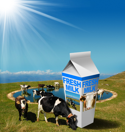 grazing: Cows grazing in the mountains with white milk carton with text Fresh Milk. Fresh milk concept Stock Photo