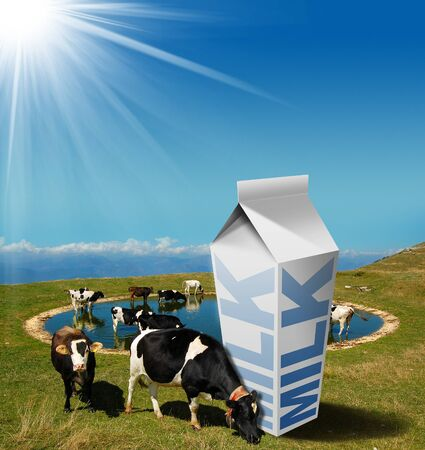 grazing: Cows grazing in the mountains with white milk carton with text Milk. Fresh milk concept Stock Photo