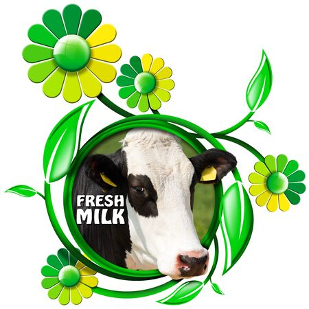 nose close up: Round symbol with a head of cow and text fresh milk green and yellow flowers with leafs. Isolated on white background Stock Photo