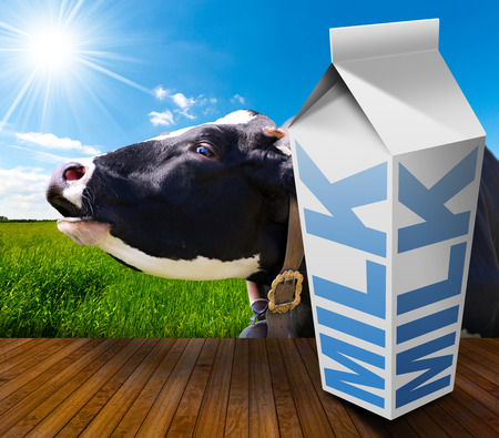 White packaging of fresh milk with text Milk, in a countryside landscape with green grass and a close up of a black and white cow mooing Stock Photo