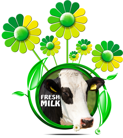 nose close up: Round symbol with a head of cow and text fresh milk, green and yellow flowers with leafs. Isolated on white background