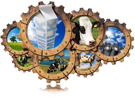 steel  milk: Seven wooden gears with cows, green pasture, steel cans for milk and white packaging carton of milk. Concept of the milk processing Stock Photo