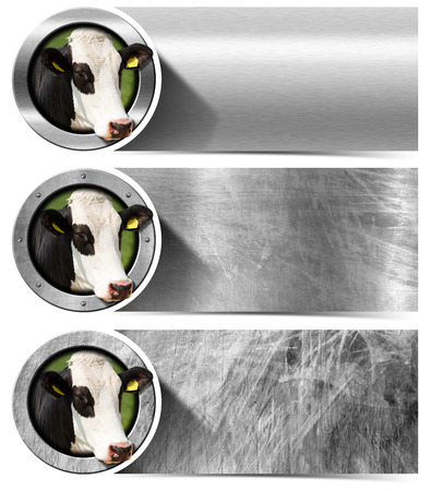 nose close up: Three horizontal metal banners with space for text head of cow inside a circle. Isolated on white background Stock Photo