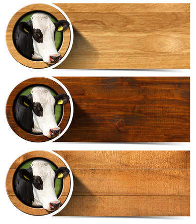 nose close up: Three horizontal wooden banners with space for text head of cow inside a circle. Isolated on white background Stock Photo