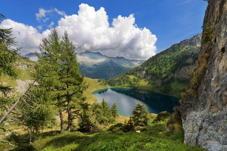 Lago di Campo Campo lake 1944 m. Small beautiful alpine lake in the National Park of Adamello Brenta, Trentino Alto Adige, Italy