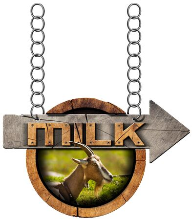 directional arrow: Wooden sign with directional arrow with text Milk, head of goat with horns. Hanging from a metal chain and isolated on white Stock Photo