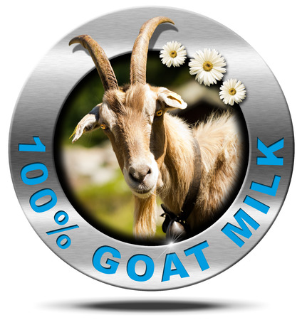 Metallic round icon or symbol with a head of horned goat, three daisy flowers and text 100  Goat Milk. Isolated on white background Stock Photo