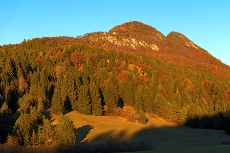 red mountain: Autumnal forest with pines, beeches and firs at sunset. Val di Sella Sella Valley, Borgo Valsugana, Trento, Italy Stock Photo