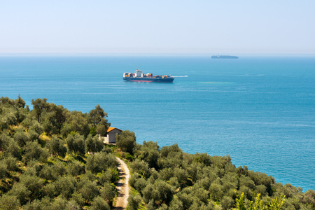 commercial tree service: Two container ships in the Gulf of La Spezia or Gulf of Poets Gulf of Poets. La Spezia, Liguria, Italy Stock Photo