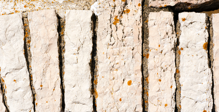excellent background: Horizontal wall with white rectangular stones makes an excellent background