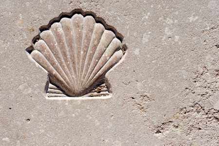 Marble background with engraved scallop seashell, symbol of pilgrimage, Santiago de Compostela Stock Photo