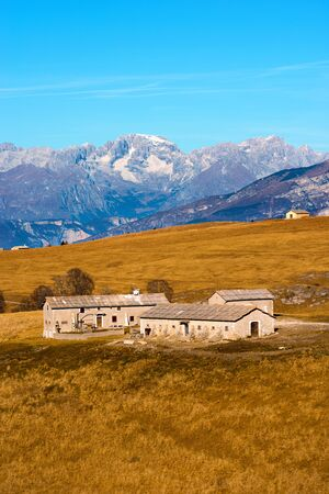 farmhouses: Typical farmhouses Malghe in Lessinia Verona, Italy for the breeding of cows, in the background the Brenta Dolomites Editorial