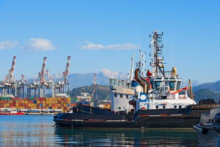 Remorqueurs, des conteneurs et des grues dans le port de La Spezia, Ligurie, Italie. Dans le fond, les Alpes Apuanes