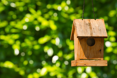 birdhouse: Old wooden birdhouse hanging with ropes. On a green blurred background