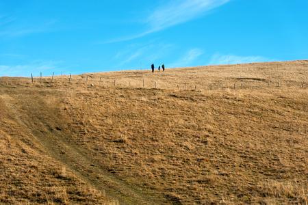 high plateau: Three hikers on the pastures in autumn of the high plateau of Lessinia, Italian Alps, Verona, Veneto, Italy, Europe