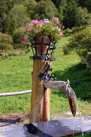 Detail of a rustic wooden fountain with a pot of geraniums in mountain. Engadine Switzerland, Europe