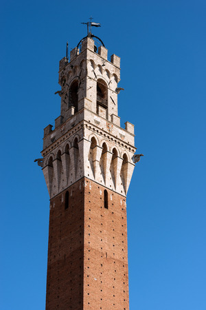 Detail of the Torre del Mangia 87 m. (Tower of Mangia) on a clear blue sky. Siena, Toscana (Tuscany), Italy