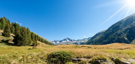Peak of Care Alto (3462 m) in the National Park of Adamello Brenta seen from the Val di Fumo. Trentino Alto Adige, Italy, Europe