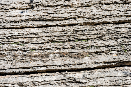 Layered rock (limestone) separated by layers of clay. Stock Photo