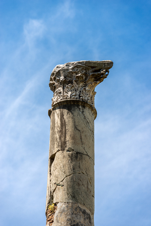 Column with capital in Corinthian style, Ostia Antica, Roman colony founded in the 7th century BC.