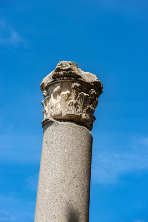 Column with capital in Corinthian style in Ostia Antica