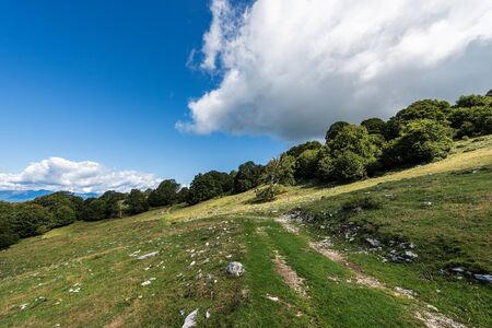Footpath between green pastures and a beech forest in Italian Alps. Monte Baldo near the Lake Garda, Verona province, Veneto, Italy, south Europe