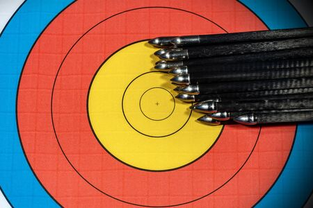 Extreme close up of a target with a large group of arrow. Archery sport