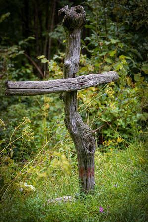 Close-up of a wooden Christian cross made of two branches in the forest, Italian Alps, Italy, Europe