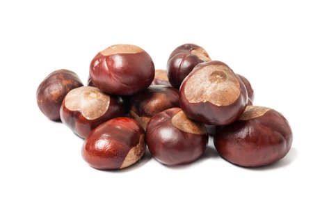 aesculus hippocastanum: Bunch of horse chestnuts isolated on white background Stock Photo