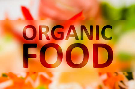 gastronomic: Organic food text concept with colored vegetable background Stock Photo