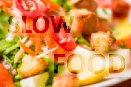 slow food: Slow food concept written on natural and organic ingredients background