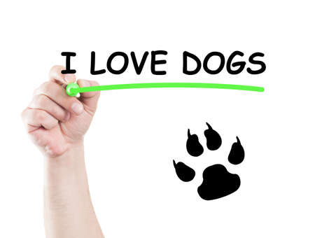 board marker: I love dogs concept made on transparent wipe board with a hand holding a marker