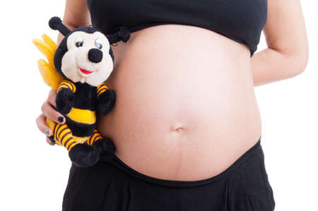 8 9 months: Close-up with big pregnant woman belly and cute plush bee toy on white background
