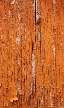 depraved: Peeled paint falling off old wooden door Stock Photo