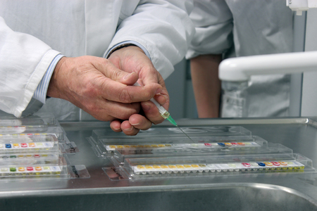 analytical chemistry: Scientist hands holding syringe performing microbiological strain identification test in laboratory.