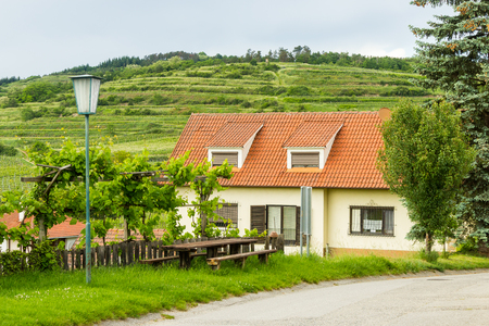 House near vineyards in small Austrian village Standard-Bild