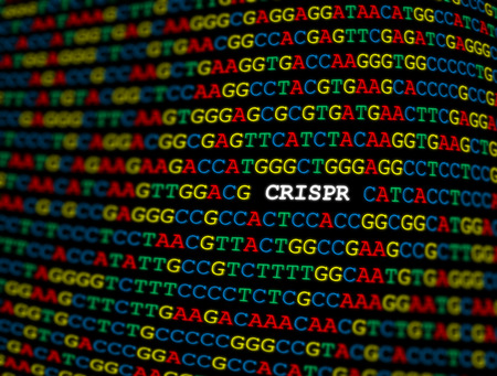 CRISPR locus on DNA sequence