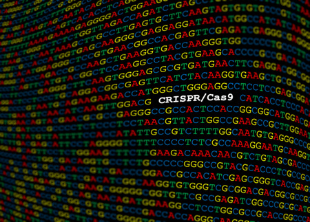 CRISPR-Cas9 locus on DNA sequence