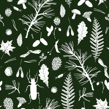 woodsy: vector seamless pattern with ink drawing forest objects, seeds, leaves, twigs, pine cones, beatles, hand drawn vector illustration