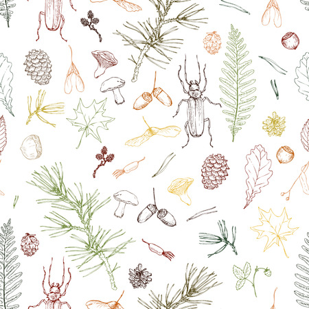acorn seed: vector seamless pattern with ink drawing forest objects, seeds, leaves, twigs, pine cones, beatles, hand drawn vector illustration