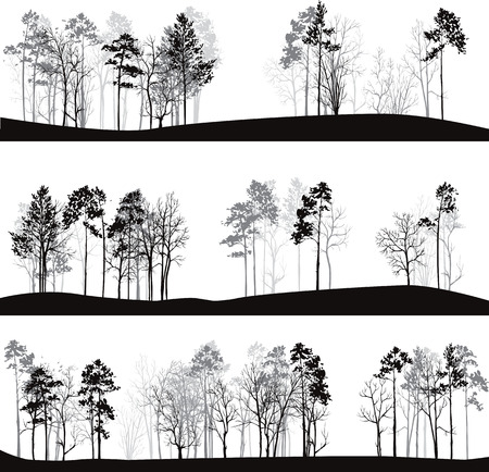 tree silhouettes: set of different landscapes with pine trees, hand drawn vector illustration