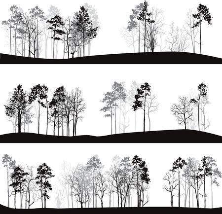 boom: set van verschillende landschappen met pijnbomen, met de hand getekende vector illustratie