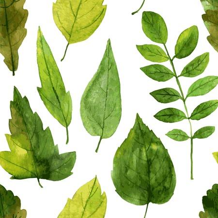 水彩で描く緑色の葉とのシームレスなパターンをベクトル、ベクトル描画要素を手