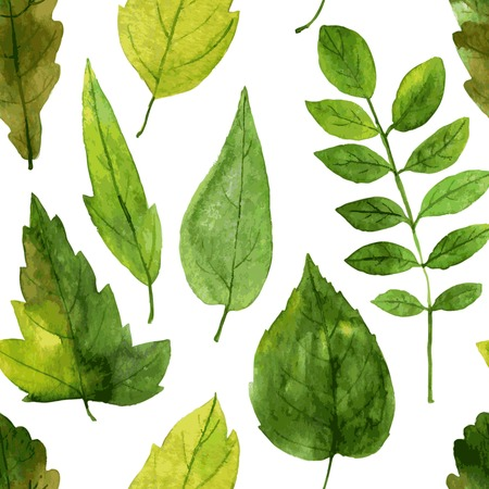 vector seamless pattern with green leaves drawing by watercolor, hand drawn vector elements Illustration