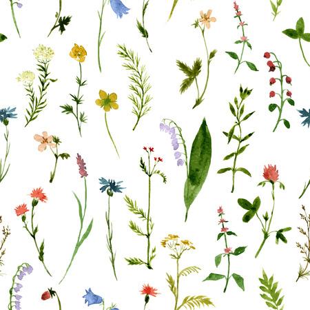 vector naadloze patroon met waterverf wilde bloemen en gras, met de hand getekende vector achtergrond Stock Illustratie