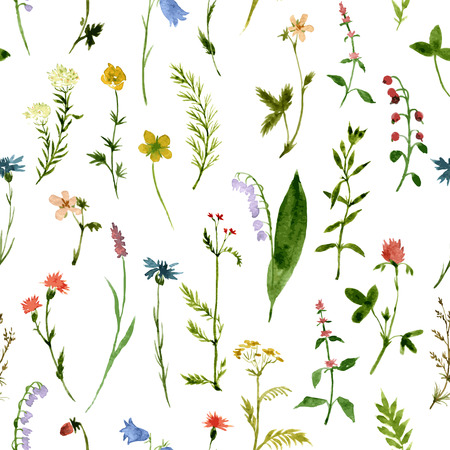 herbal medicine: vector seamless pattern with watercolor wild flowers and grass, hand drawn vector background