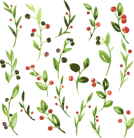 foxberry: set of vector watercolor green branches with leaves and berries, hand drawn vector design elements Illustration