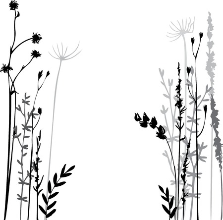 Silhouettes of flowers and grass, hand drawn vector illustration Çizim